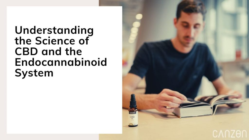 Understanding the Science of CBD and the Endocannabinoid System
