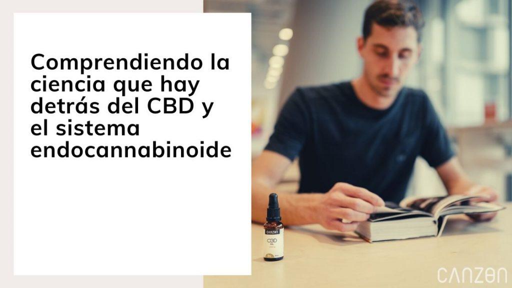 Comprendiendo la ciencia que hay detrás del CBD y el sistema endocannabinoide