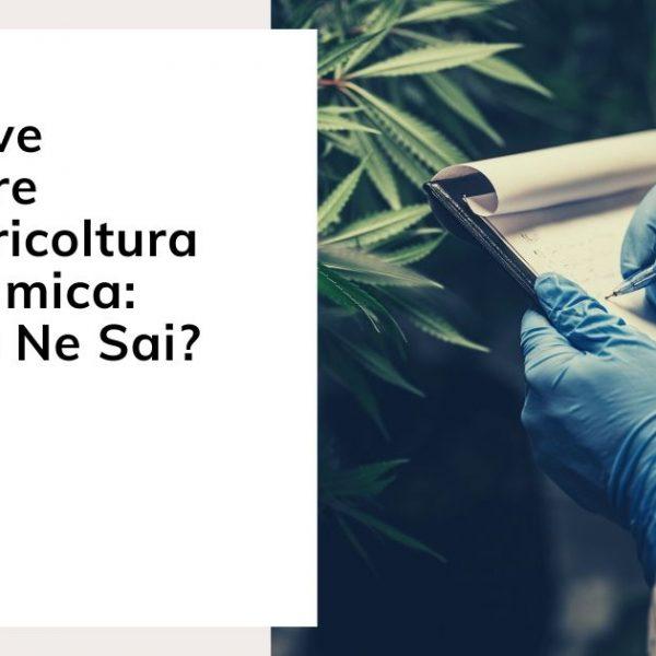 Le Nuove Frontiere Dell'agricoltura Biodinamica: Quanto Ne Sai?