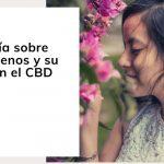 Una guía sobre los terpenos y su papel en el CBD