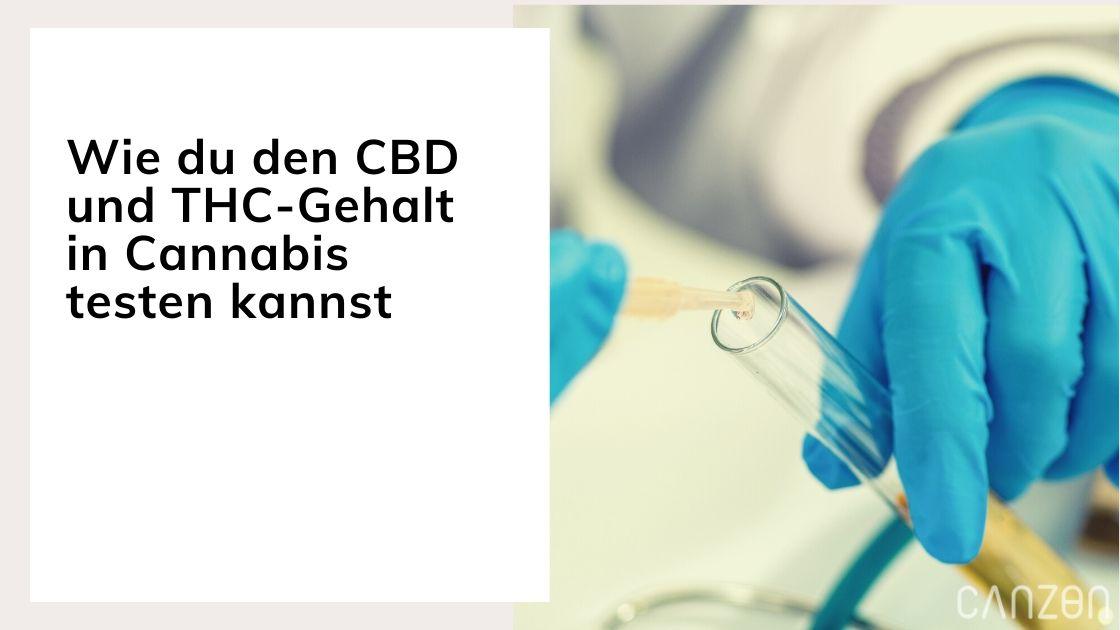 Wie du den CBD und THC-Gehalt in Cannabis testen kannst
