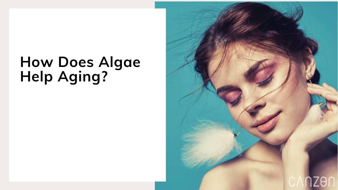 How Does Algae Help Aging